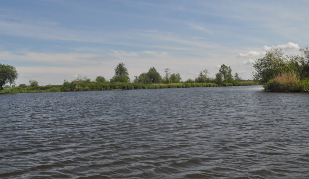 reka-pregolya