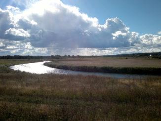 reka-prohladnaya-v-kaliningradskoj-oblasti-sm
