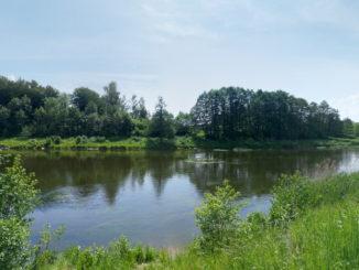 reka-lava-v-kaliningradskoj-oblasti-sm