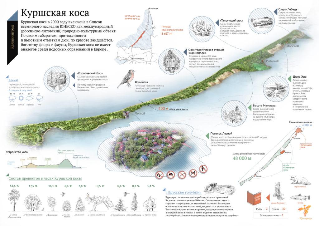 Информационная карта Куршской косы